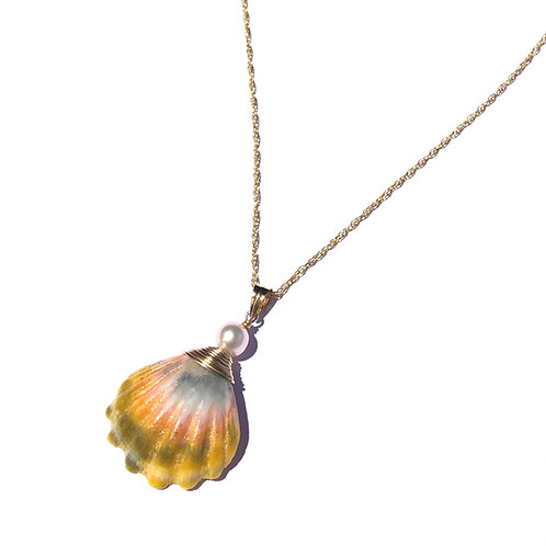 Hawaiian Sunrise Shell with Freshwater Pearl Necklace