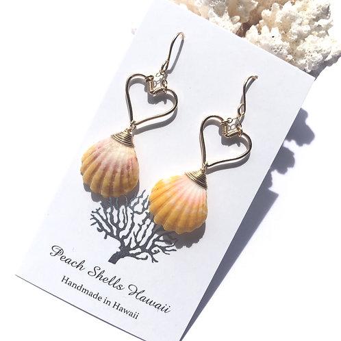 14K Gold Filled Heart with Hawaiian Sunrise Shell Earrings(1)
