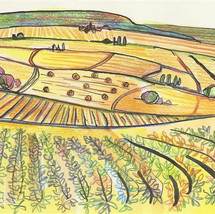 Bourgondisch landschap