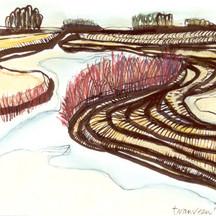 Landschap 6