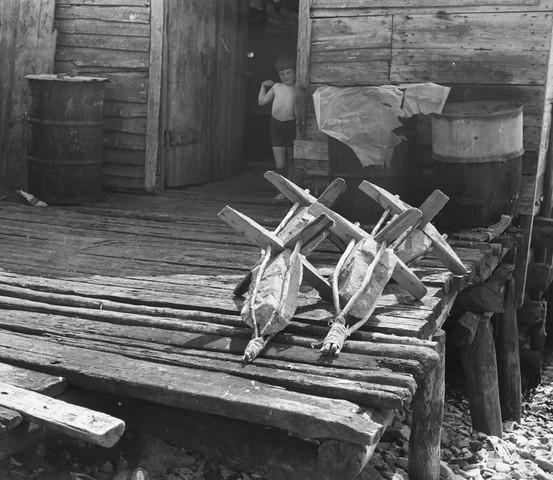 Killicks, fishing stage and child, Tilting, 1973