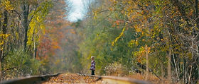 Cooped up in the house on a beautiful fall day, a young boy sneaks out to find adventure-- but it's not the first time.