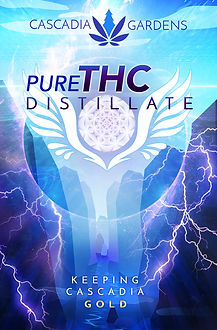 Distillate_Background3.jpg