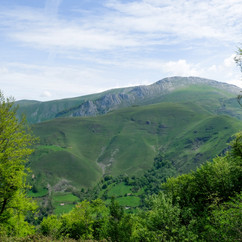 Pyrenees_.jpg