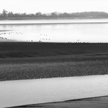 River Severn.jpg
