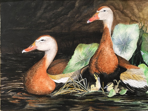 Whistling Ducks- Limited edition