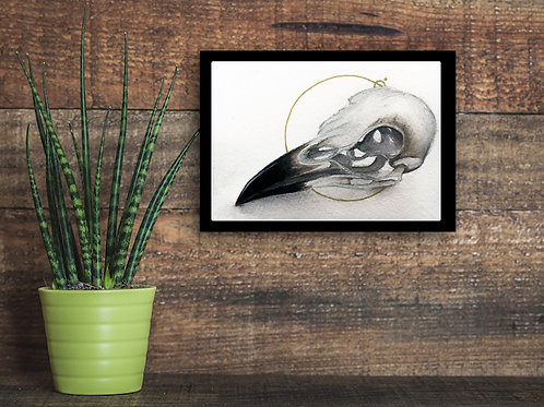 Crow Skull Original Watercolor Painting