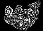 logo De Forel forellenvijver Bergharen,