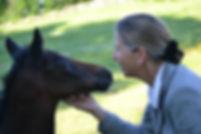 Sally Philippo | foal