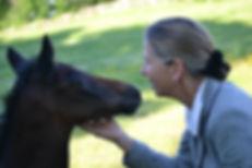 Sally Philippo   foal