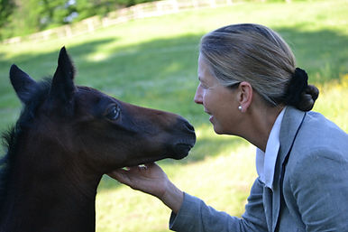 Sally Philippo | foal