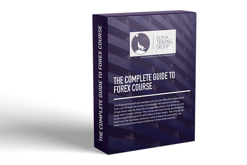 Complete Guide To Forex Course