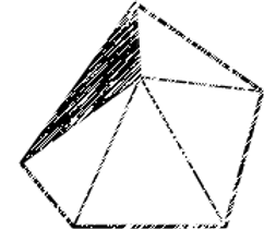 5 polígono