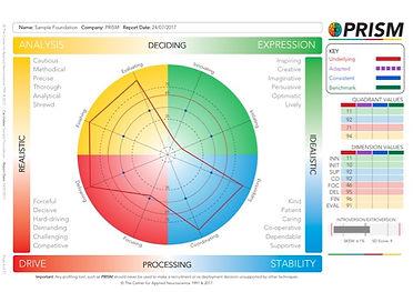 Sample PRISM Foundation Profile.jpg