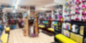 Imagen Segovia tienda.jpg