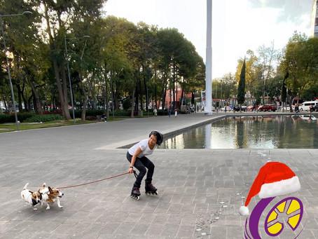Patinar con tu perro o Roller-Joring la mejor forma de divertirte con tu perro