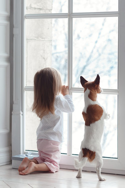 Little girl and the dog looking out the