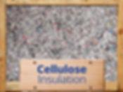 Cellulose4.jpg