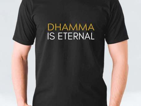 Everything is impermanent but the Dhamma is eternal - How is that possible?