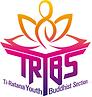 TRYBS Logo White Back.png