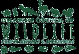 logo-in-color-no-bg.png