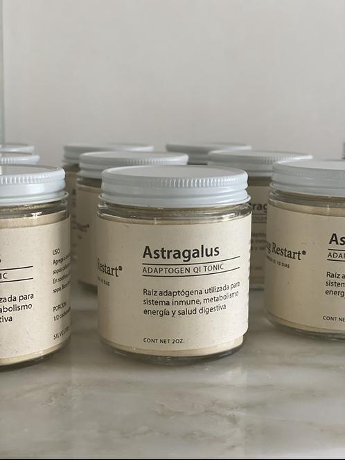 Astragalus en polvo