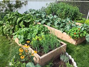 jardin en v.jpg