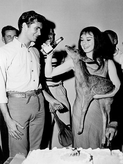 Anthony Perkins Bulging Beside Audrey Hepburn Holding a Fawn