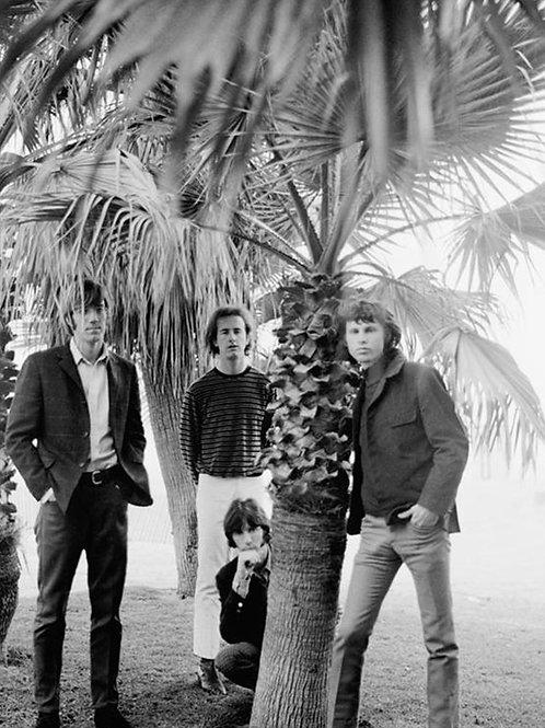 Jim Morrison & The Doors at Venice Beach