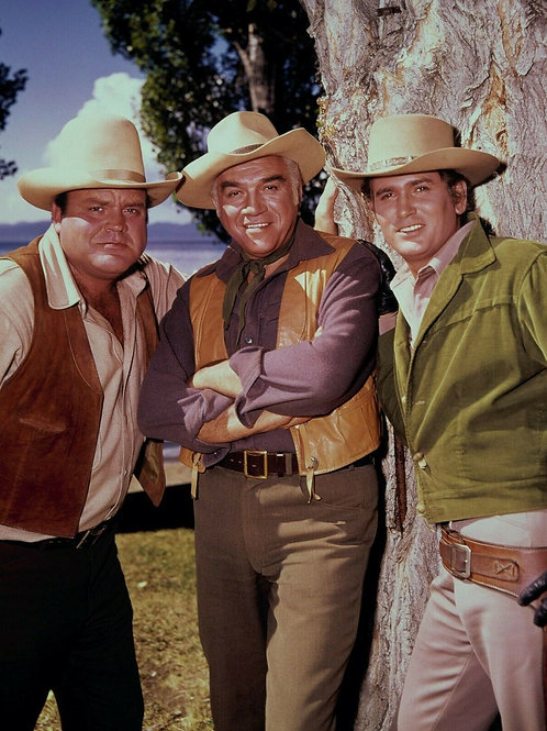 3 Handsome Men of Bonanza