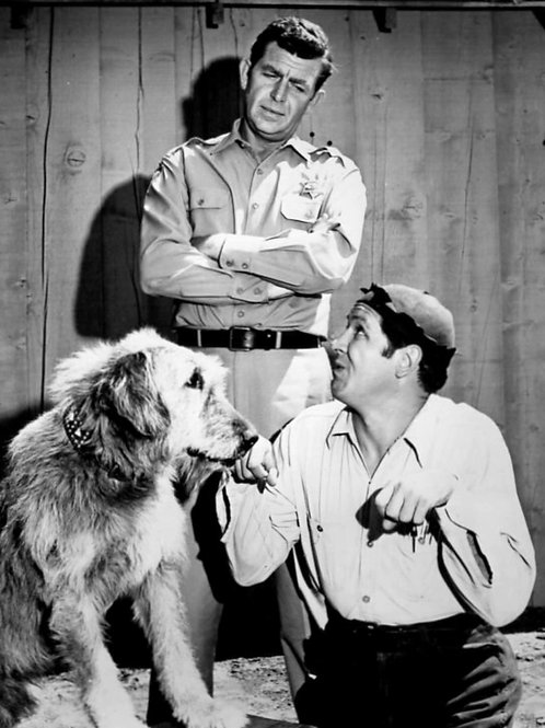 Andy Griffith with George Lindsey & a Dog in the Andy Griffith Show