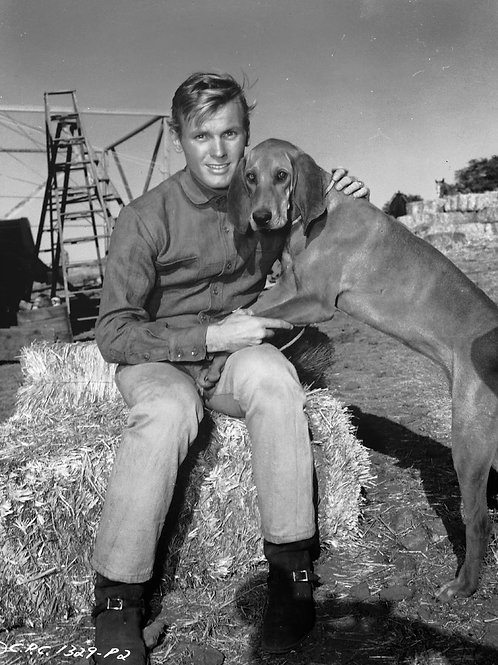 Tab Hunter Posing with his Dog