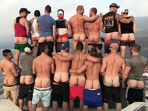 A Bunch of Asses on a Boat
