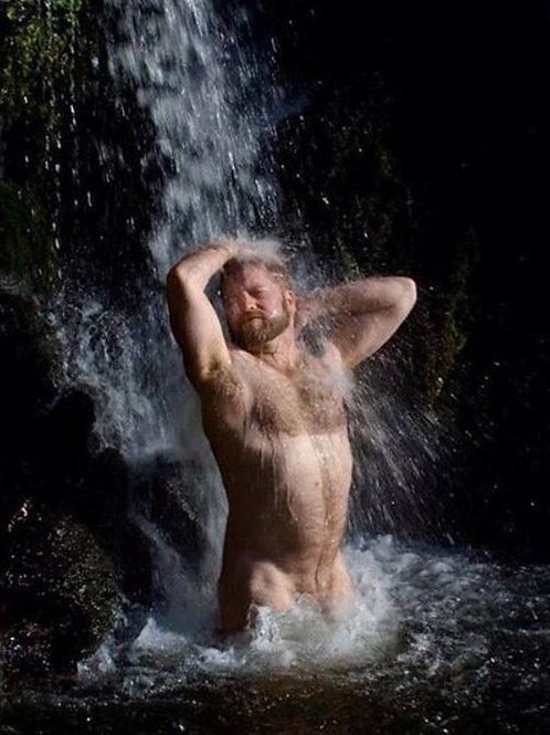 Bear Under the Falls