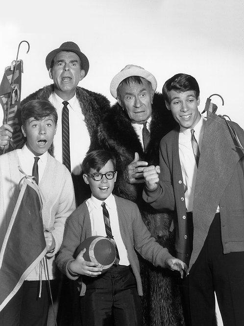 Cast of TVs My Three Sons