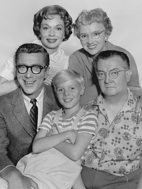 Cast of Dennis the Menace in 1960