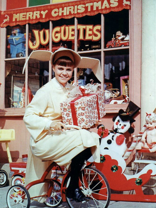 Sally Field in The Flying Nun at Christmas