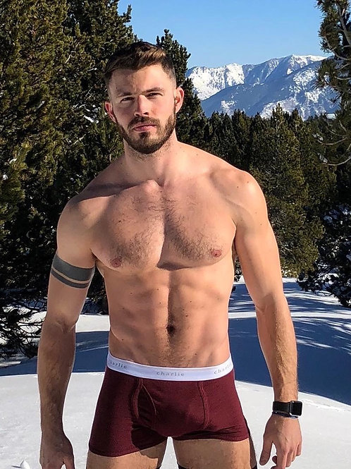 Red Briefs in the Snow