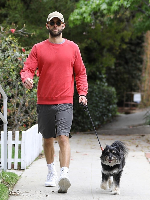 Chace Crawford Walking the Dog