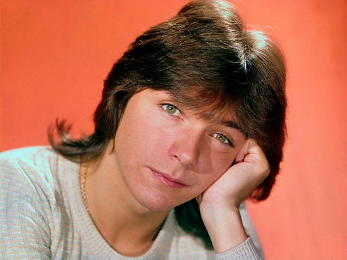 Young David Cassidy in Deep Thought