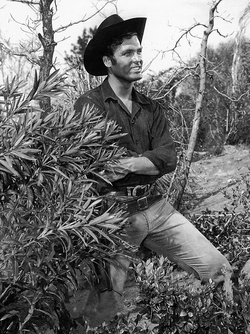 Ty Hardin as a Cowboy Sporting a Huge Bulge in his Jeans