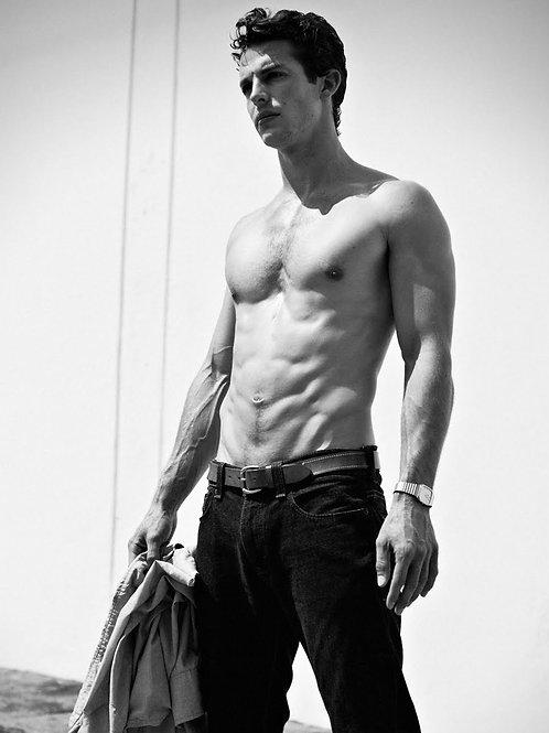 Shirtless James Tanis