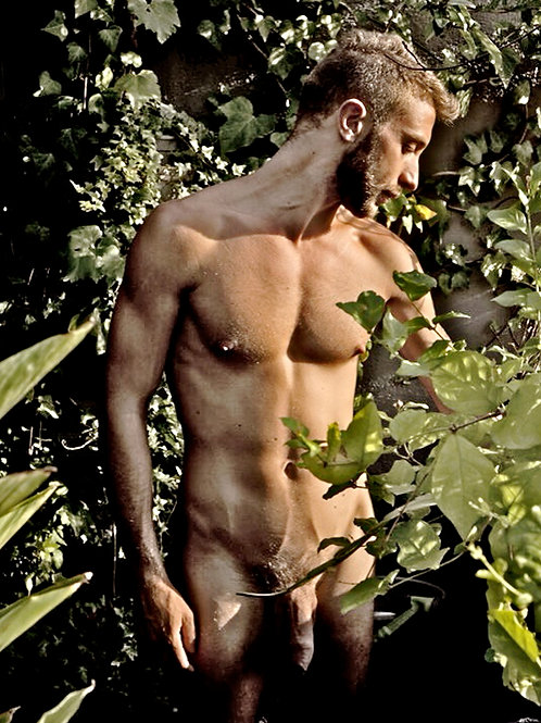 Standing in the Bushes