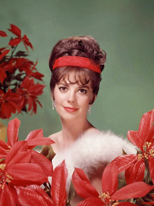 Natalie Wood In Fur Surrounded by Poinsettias