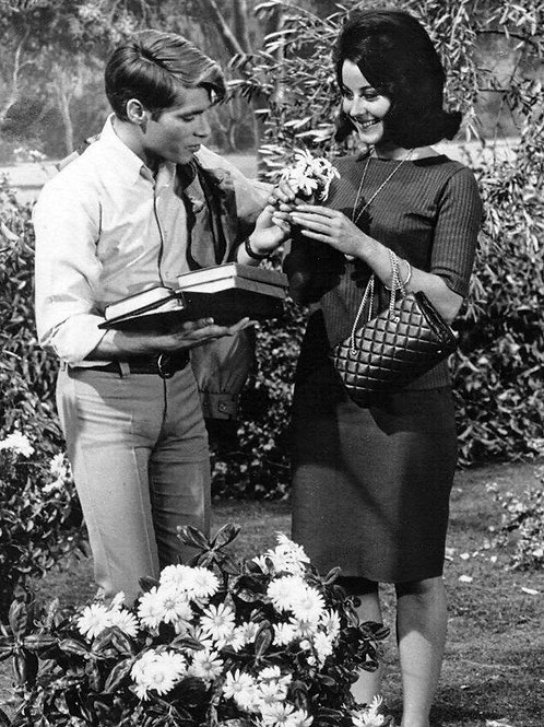 Don Grady Giving a Flower to a Pretty Lady