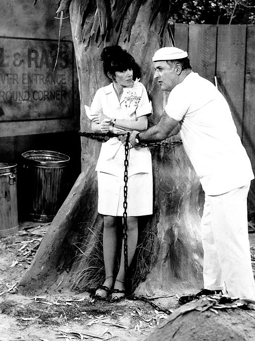 Beth Howland & Vic Tayback in Alice