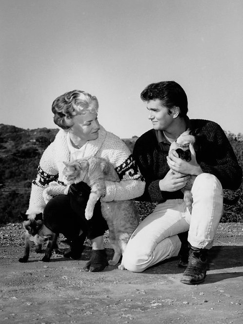 Michael Landon with Cats