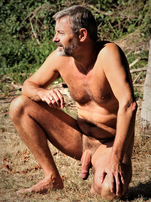 Silver Fox Kneeling in the Grass