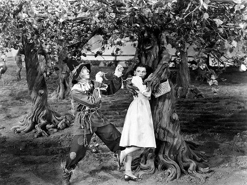 Judy Garland as Dorothy Being Grabbed by a Tree in the Wizard of Oz