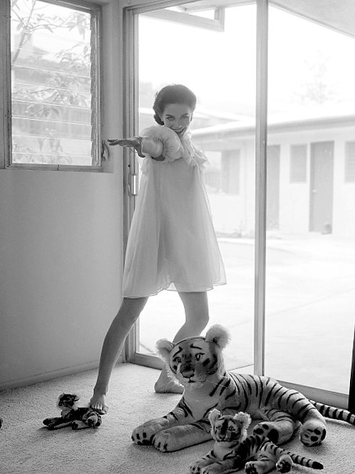 Sexy Natalie Wood in a Nighty Posing with Stuffed Toys in the 1950s